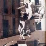 Any 1973. Premi Col.laboració Fallera